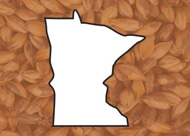 MinnesotaTN4